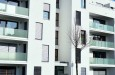 mieszkanie-developer